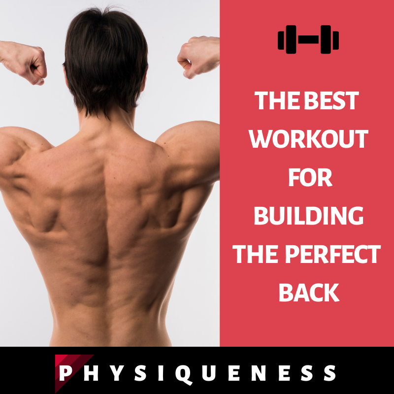 Perfect Back Workout for Men