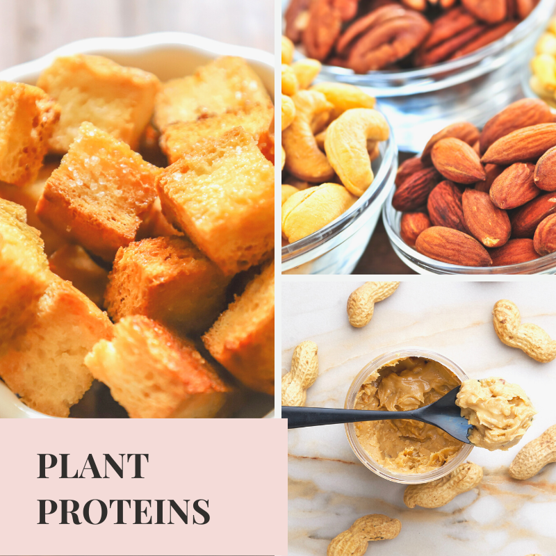 How Much Protein for Muscle Gain, Plant Protein Foods