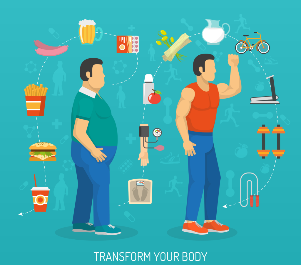 Illustration of the Relationship Between Nutrition and Body Fat for Transforming Your Body